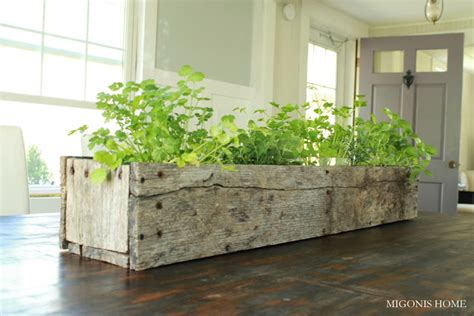 indoor herb planter ideas place  call home