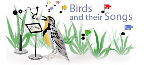 bird songs asu ask a biologist