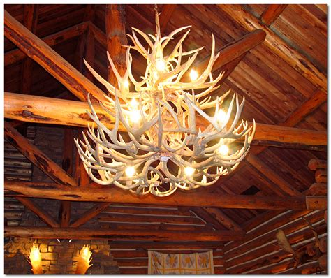 How To Make A Deer Horn Chandelier How To Make Deer Antler Chandeliers Chandelier