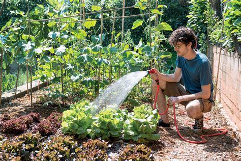 quando innaffiare il giardino irrigare l orto quando come e quanto agricoltura365