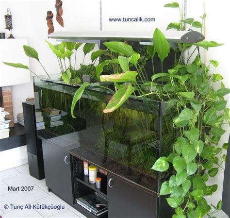 Ls For Indoor Plants by 17 Meilleures Images 224 Propos De Paludarium Indoor