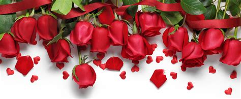 Valentines Day Roses That Speak To You by Insider S Guide To S Day Roses Sweet Yard Tweets