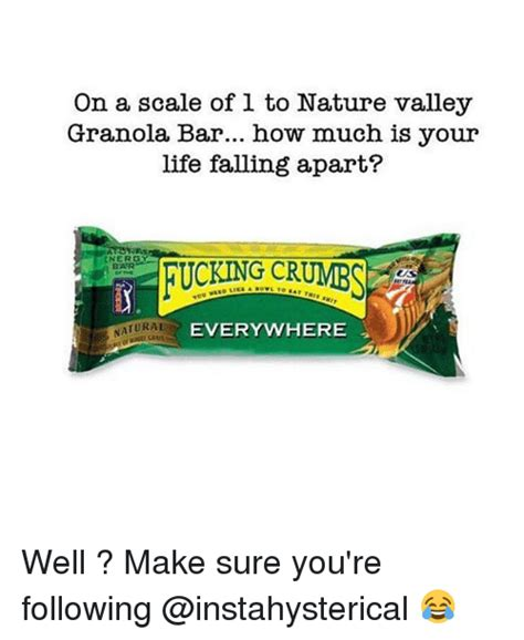 Nature Valley Granola Bar Meme - nature valley meme 100 images when you have to settle