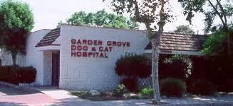 garden grove and cat hospital garden grove cat hospital