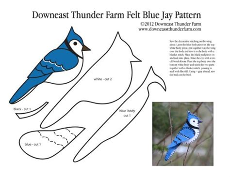 Blue Jay Pattern | bold blue jay felt ornament occasions and holidays