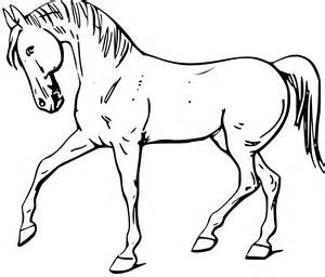 Outlines Of Animals For Colouring by Clipart Walking Outline