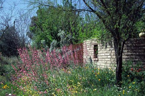 Botanical Garden Tucson Tucson Botanical Gardens