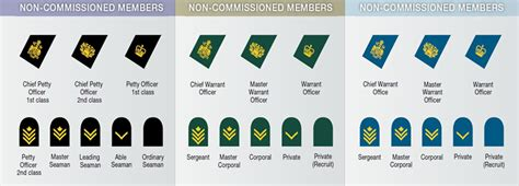 canadian military rank structure for the air force navy and army canadian armed forces ranks www pixshark com images