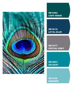 1000 ideas about peacock color scheme on peacock colors colour schemes and color