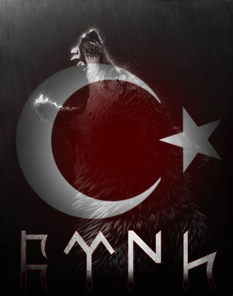 turk bayragi ve bozkurt 75 best images about t 220 rk bayrağı on pinterest istanbul