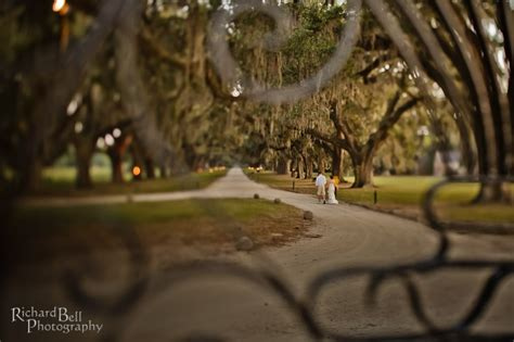 87 best boone hall plantation images on pinterest architecture beautiful places and colonial 82 best boone hall plantation images on pinterest