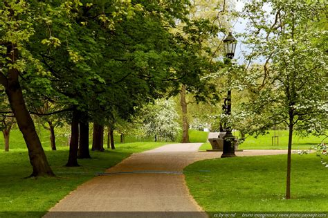 background green park london green park road hd desktop wallpaper instagram photo