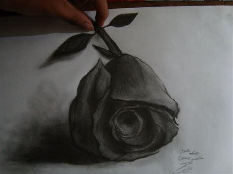 imagenes de rosas en 3d a lapiz como dibujar una rosa en 3d a lapiz imagui