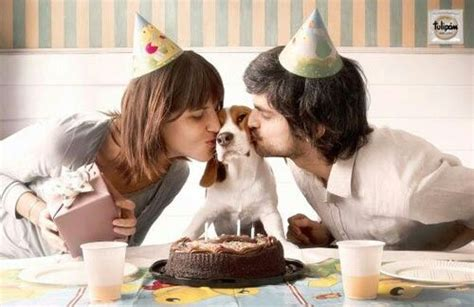 Nosework For Dogs 2nd Ed best 25 birthday ideas on puppy