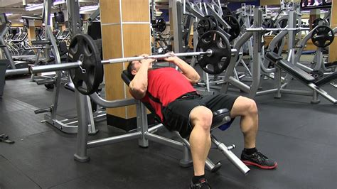 bench press plateau 5 tricep exercises to help you bust through your bench plateau