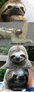 good sloth meme image images collections hd