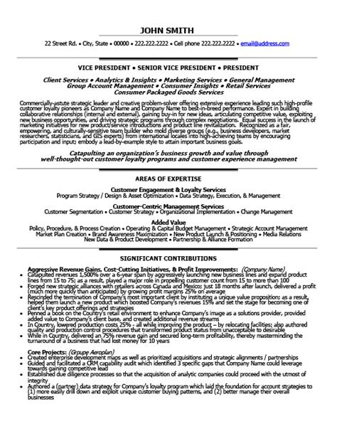 Resume Template Vice President by Senior Vice President Loyalty Resume Template Premium