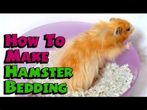 diy hamster bedding diy hamster bedding