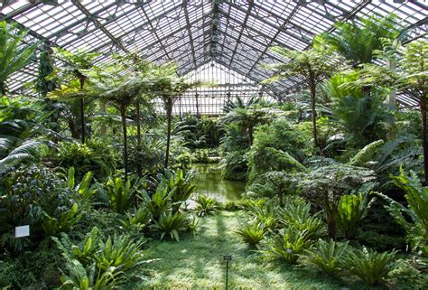 Garfield Park Conservatory · Sites · Open House Chicago