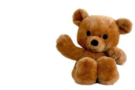 teddy bears teddy bears my sweet world