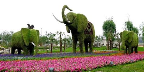 elephant topiary 20 intricate and beautiful topiary sculptures page 3 of 5