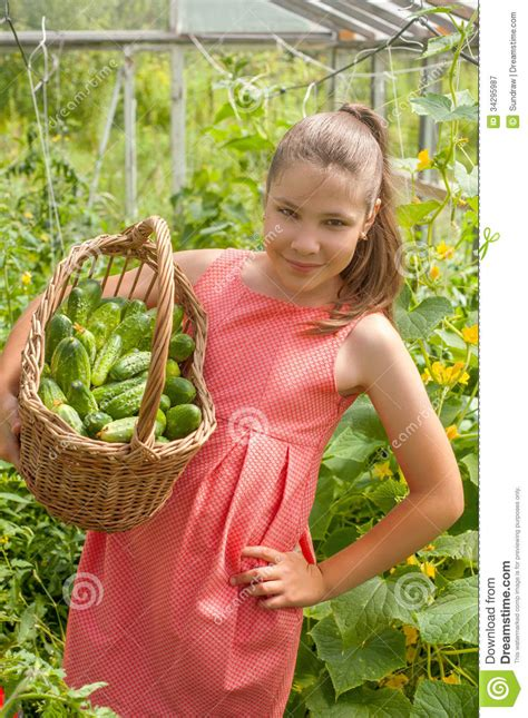 girl with cucumber lovely girl with cucumbers royalty free stock photography