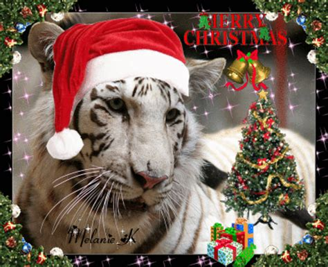merry christmas tiger picture 103078819 blingee com