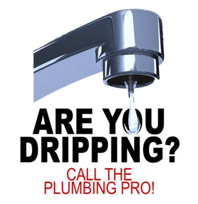 about the plumbing pro