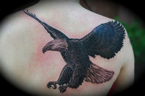 eagle tattoo and piercing studio 18 best images about eagles on pinterest ribs body