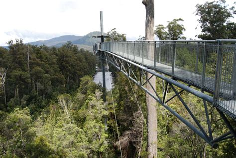 Airwalk Stripped doubts forestry s ecotourism claims abc news