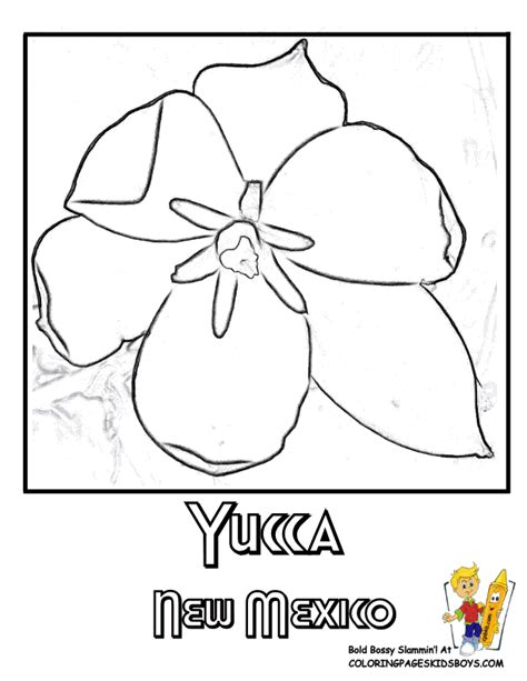 coloring pages of mexican flowers new mexico state coloring pages