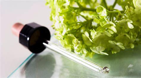 fiori di bach numeri la bufala dei fiori di bach wired