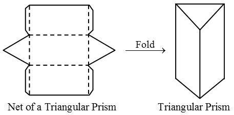 net pattern of triangular prism net of a cuboid archives a plus topper