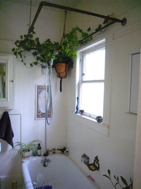 low light bathroom plants best 25 low light houseplants ideas on pinterest indoor