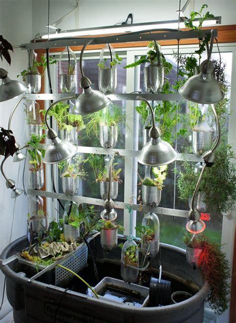 geeky gardening   grow vegetables  green