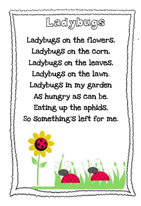 kindergarten poems the busy kindergarten ladybug poem freebie
