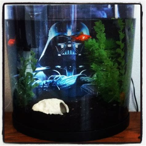 Unique Fish Tank Decorations by Fish Tank I Made For Luke Leia Easy To Make