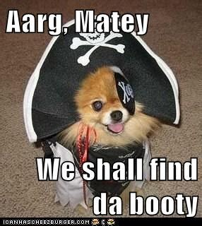 Pirate Booty Meme - pirate booty i has a hotdog dog pictures funny