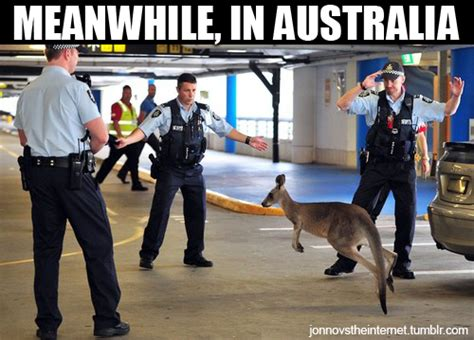 Funny Australia Day Memes - 27 hilarious australia memes that perfectly describe