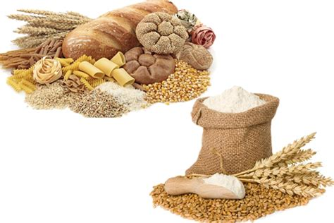 whole grains vs grains whole grain vs whole wheat thosefoods
