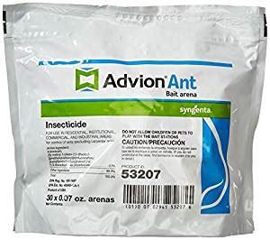 kitchen safe ant killer pet safe ant killer pet friendly way to get rid of ants