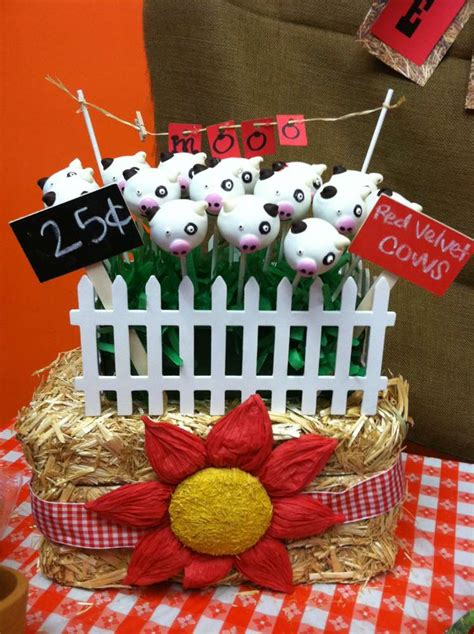 farm themed birthday decorations farm theme birthday ideas photo 1 of 17 catch my