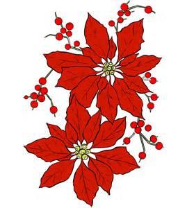 poinsettia blumen zu weihnachten kostenloses stock bild public domain pictures