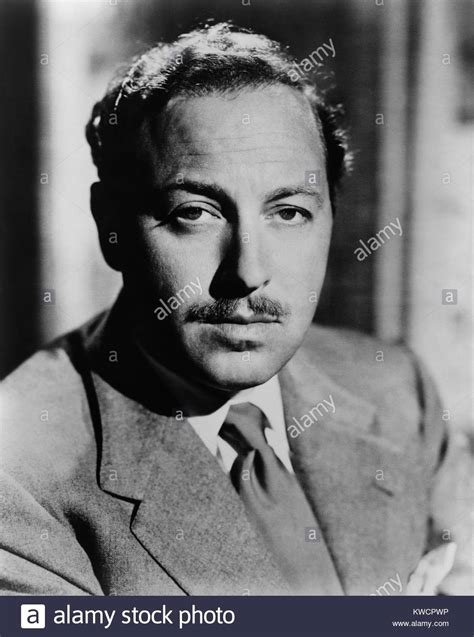 the rose tattoo tennessee williams the stock photos the stock