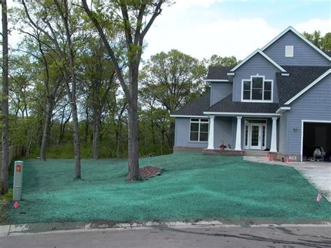 what is a hydroseed lawn