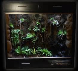 reptile terrariums google search enclosure thoughts pinterest