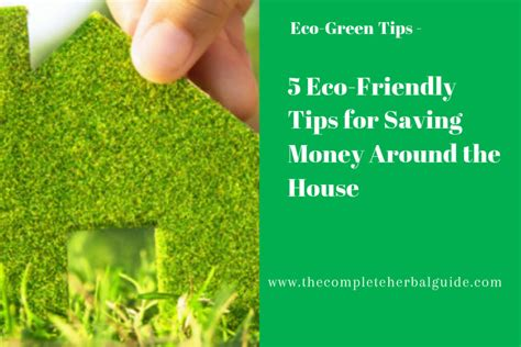 5 eco friendly tips for saving money around the house