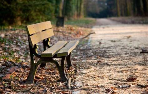 buy park bench buy a park bench 28 images buy a handmade custom made