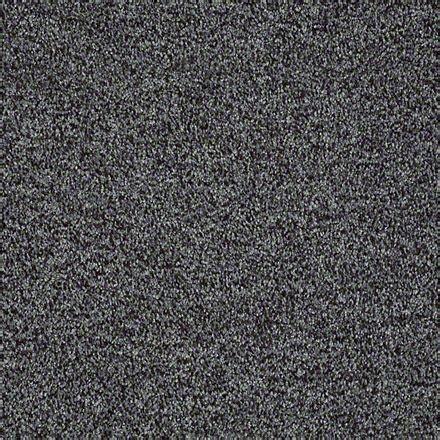 Resista Carpet Buy Dazzle Me Texture By Shaw Philadelphia Texture