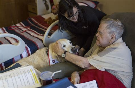 Blood Considers Adoption by Adopting A Senior Pet For A Senior In Need American